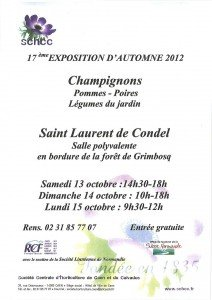 Exposition d'automne 2012 de la SCHCC dans Exposition d'automne exposition-automne-schcc-2012-212x300